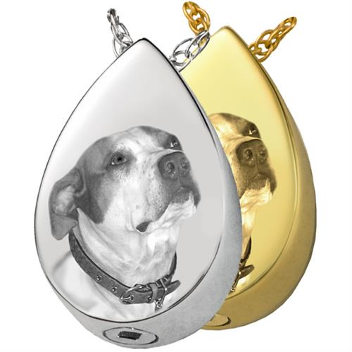 Photo Slide Teardrop Pet Cremation Jewelry shown in silver and gold