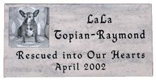 Pet Photo Memorial Headstone - Dolomitic Stone