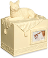 Cat Cremation Urn: Beloved Companion