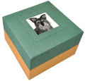 Biodegradable Pet Urns: Green with Photo
