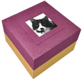Biodegradable Pet Urns: Purple with Photo
