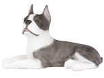 Figurine Dog Urns: Boston Terrier