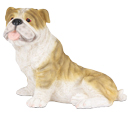 Figurine Dog Urns: Bulldog Brindle & White