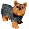 My Companion Urn Keepsake Yorkshire Terrier