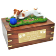 Brown & White Jack Russell Terrier Ball on Grass