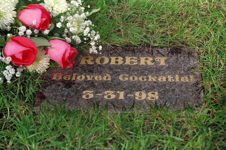 Pet Memorial Burial Markers Large