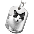 Photo Laser Engraved Pet Cremation Jewelry: Dog Tag