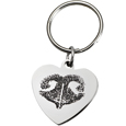 Stainless Steel Heart Tag Noseprint Pet Memorial Key Ring