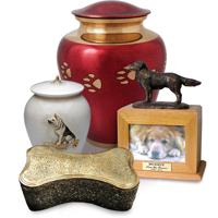 dogs urns