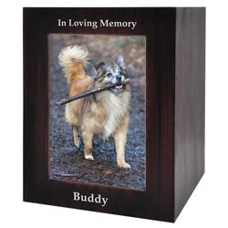 dog urn with photo