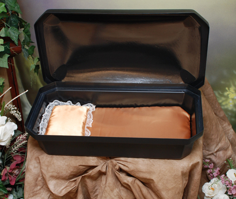 "Pet Casket- Black with Gold Bedding 18"" small"