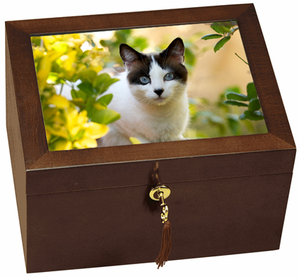 Large Wooden Cat Urn With Photo