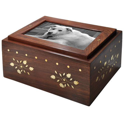 Photo Wood Dog Urn Chest shown with b&w photo