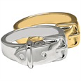 Pet Cremation Jewelry Ring- Collar in silver or gold