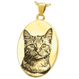 pet photo oval jewelry in gold