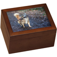 wood chest urn with frame showing dog photo