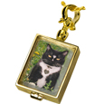 Pet Urn Jewelry: Victorian Glass Locket, Lock of Fur Glass, Rectangle