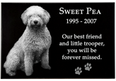 Granite Photo Pet Grave Marker sample layout