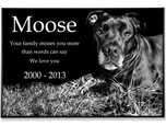 Granite Photo Pet Grave Marker - 2