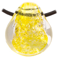Pet Memory Glass Urn Pendant: Daffodil Yellow