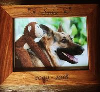 personalized wood urn with photo of pet dog with stuffed monkey toy on back