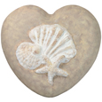 Eco-Friendly Shells Heart Pet Urn- Medium