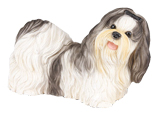 Figurine Dog Urns Shih Tzu Black & White