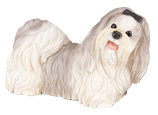 Figurine Dog Urns Shih Tzu Gray & White