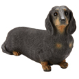 My Companion Keepsake Dachshund Black