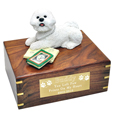 Bichon Frise with Books Figurine Wooden Urn