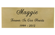 Shown with text only and no clip art