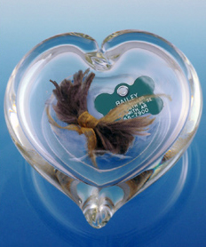 Pet Memorial Encased Keepsake Clear Gathering Heart