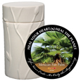 Pet Cremation Urn Memorial Tree- Mexican Fan Palm