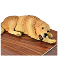 Detail of  Golden Retriever -Laying figurine