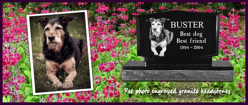 Pet Memorials Pet Cremation Jewelry Pet Urns Dog