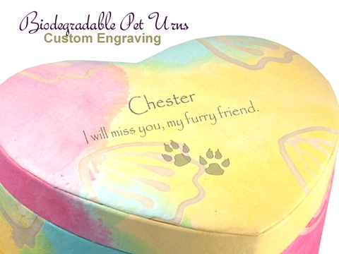 Pet Unity Earthurn Pastel 