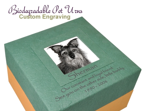 Engravable Embrace Earthurn Green with Photo Insert detail
